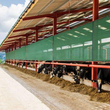 Farm Galebraker | Livestock Protection Windscreen