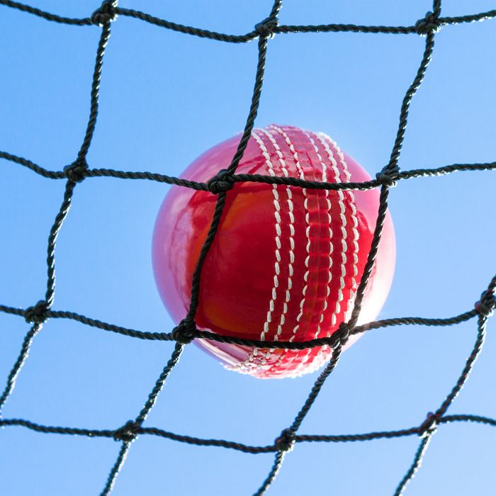 Cricket Warm-Up / Throw-Down Practice Net