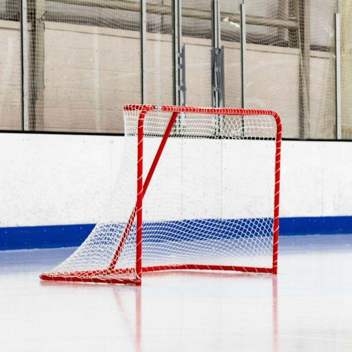 Regulation Hockey Goal | Net World Sports