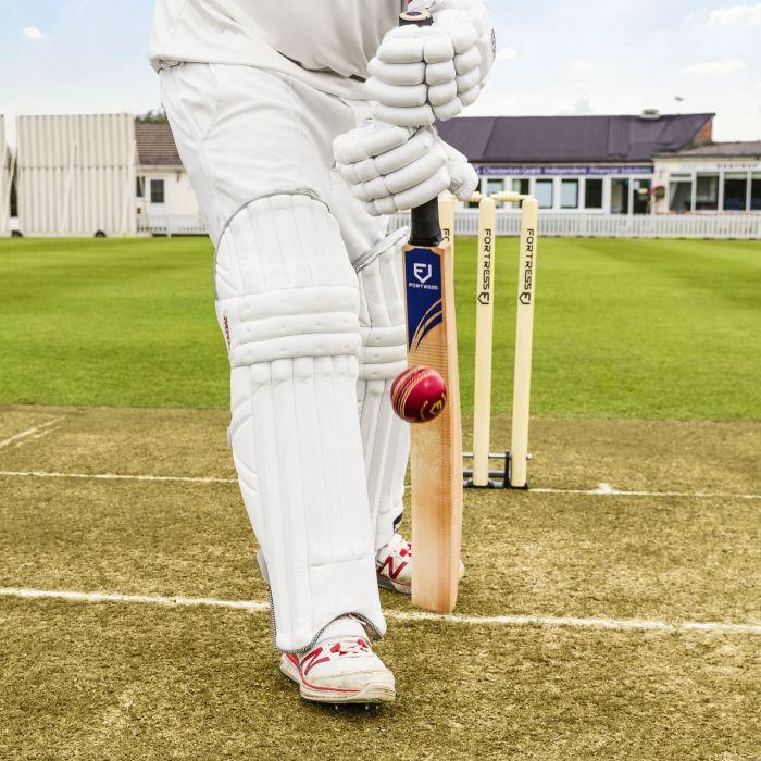 Kashmir Willow Cricket Bat For Testing Technique   Net World Sports