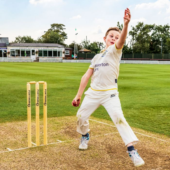 Professional Cricket Stumps For Club Matches   Net World Sports
