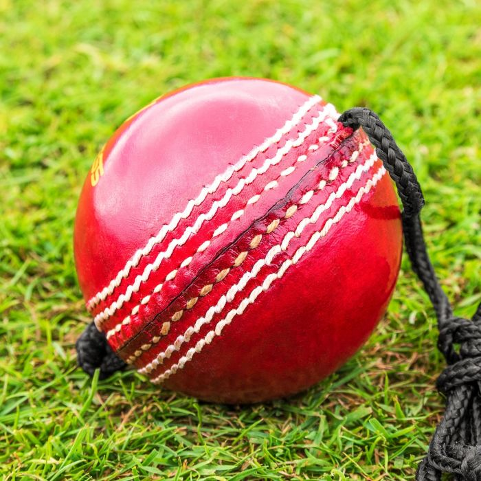 String Cricket Balls For Batting Practice | Net World Sports