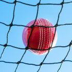2mm HDPP Cricket Netting With 48mm Knotted Mesh | Net World Sports