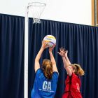 Competitive Netball Posts