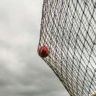 Premium Ultra Heavy Duty Drop-In Cricket Nets