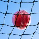 Cricket Warm-Up / Throw-Down Practice Net