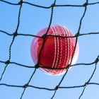 48mm Cricket Net Panels [Fully Edged]