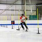 Agility Poles For Hockey Training