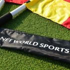 Easy To Transport UEFA Linesman Flags