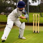 Match Regulation Cricket Stumps For Indoor & Outdoor Use | Net World Sports