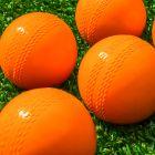 High Quality Garden & Backyard Cricket Balls | Net World Sports