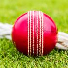 Pack Of 6 County Match Crown Cricket Balls | Net World Sports