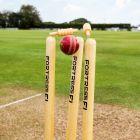Premium-Grade Wooden Cricket Stumps | Net World Sports