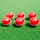 6 High-Quality Plastic Cricket Balls | Net World Sports