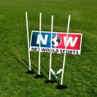 Rounders Poles (4 Pack) | Rounders Base Poles | Net World Sports