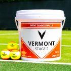 Vermont Mini Orange (Stage 2) Mini Tennis Balls | Net World Sports