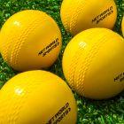 Practice Cricket Balls | Net World Sports